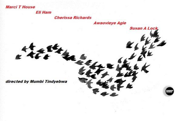 bird_flock FB